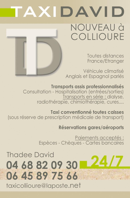 Taxi Collioure: Skoda