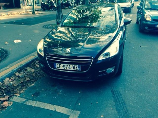 Taxi Le Blanc-Mesnil: Renault
