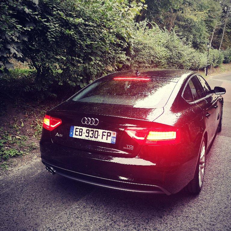 VTC Montfort-l'Amaury: Audi