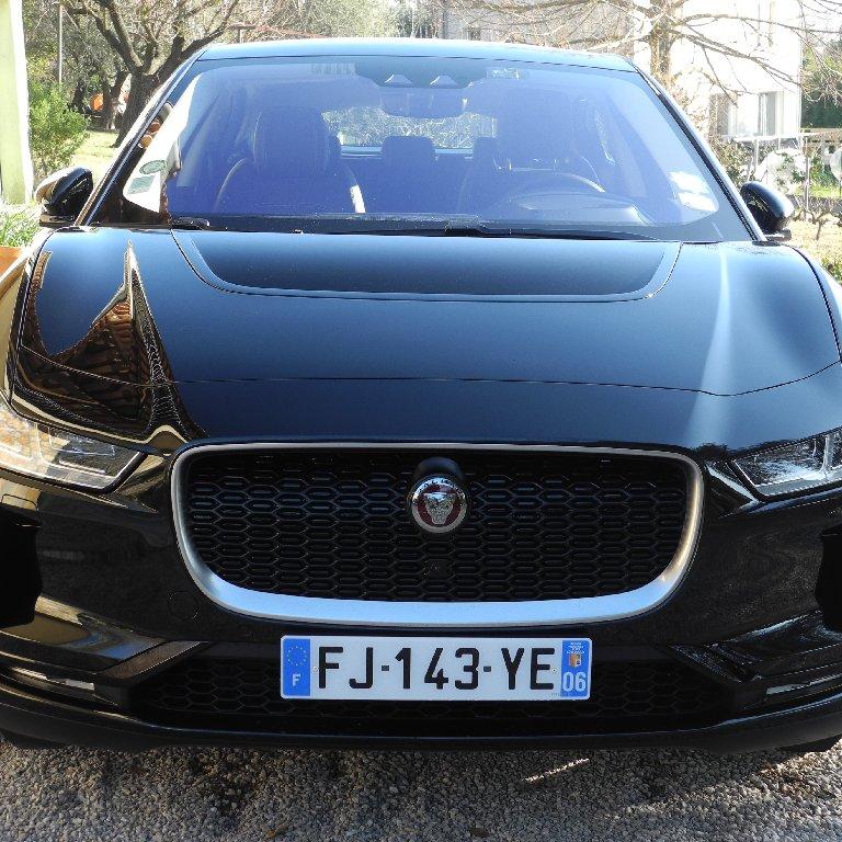VTC Opio: Jaguar