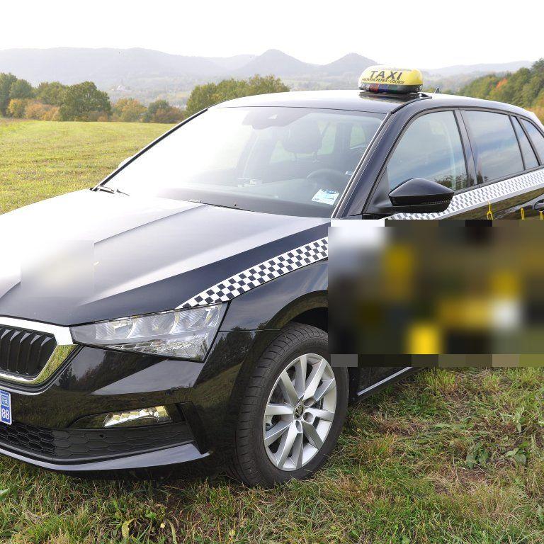 Taxi La Voivre: Skoda