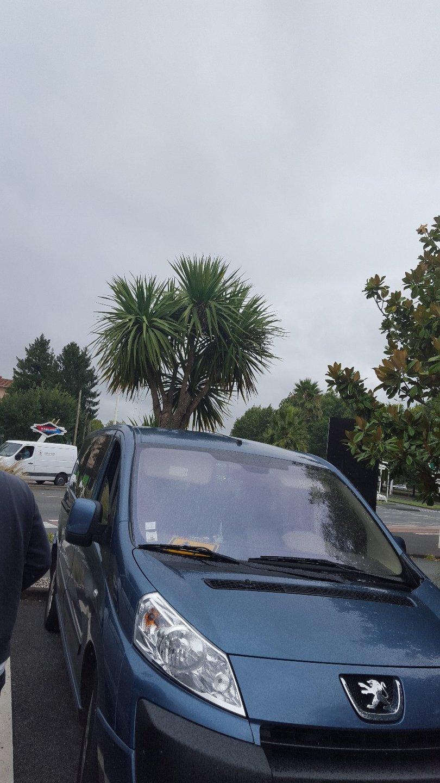 Taxi Hendaye: Peugeot